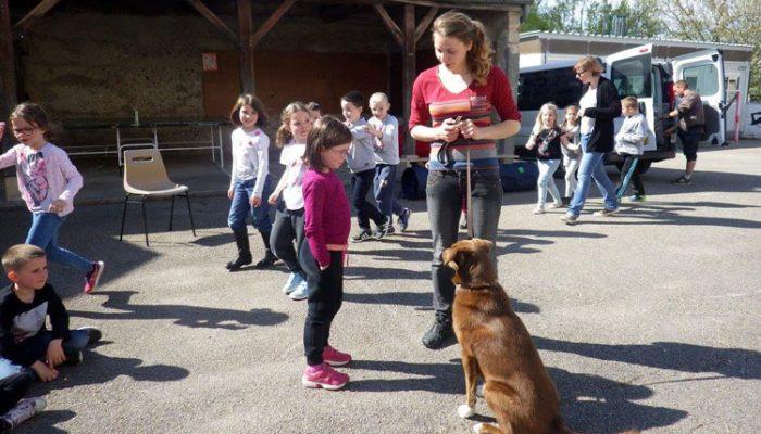 Art Atelier Canin 03 17 04
